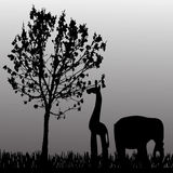 Vector silhouette of animal. Royalty Free Stock Photos