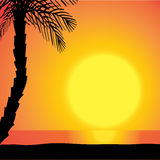 Vector silhouette background beach. Royalty Free Stock Images