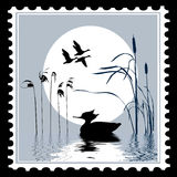 Vector silhouette bird. On postage stamps Stock Images