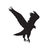 Vector silhouette of the Bird of Prey in flight with wings spread Stock Photography