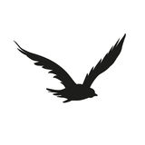 Vector silhouette of the Bird of Prey in flight with wings spread Royalty Free Stock Images