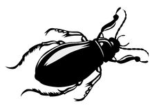 Vector silhouette bug Royalty Free Stock Photo