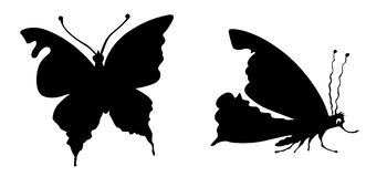 Vector silhouette butterfly Royalty Free Stock Images