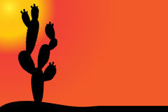 Vector silhouette of cactus. Stock Photos