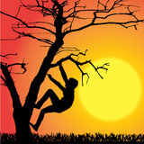 Vector silhouette of children. Vector silhouette of children who play at sunset Stock Image
