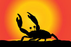 Vector silhouette of a crab. Royalty Free Stock Photography
