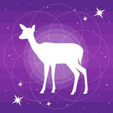 Vector silhouette of deer or doe flat Illustration on a  gradient purple backgroud with constellation of stars and soft light
