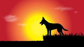 Vector silhouette of dog. Stock Photo