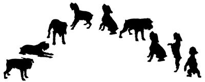 Vector silhouette of a dog. Stock Photography