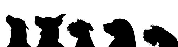 Vector silhouette of a dog. stock illustration