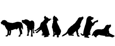 Vector silhouette of a dog. Vector silhouette of a dog on a white background Stock Photos