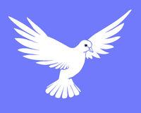 Vector silhouette dove Stock Photography