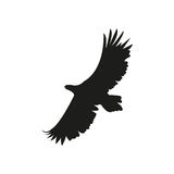 Vector silhouette of the eagle in flight with wings spread Royalty Free Stock Image