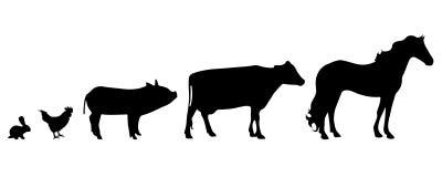 Vector silhouette of farm animal. Stock Image