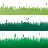 Vector silhouette of grass. Royalty Free Stock Images