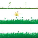 Vector silhouette of grass. Stock Image