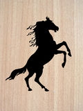 Vector silhouette horse Royalty Free Stock Photos
