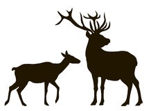 Vector silhouette of a pair of deer Stock Photography
