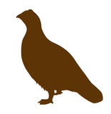 Vector silhouette of the partridge Royalty Free Stock Photos