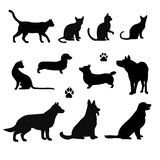 Vector silhouette of pet Stock Photography