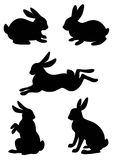 Vector silhouette of the rabbit. Vector silhouette of the rabbit, hare on a white background Royalty Free Stock Photography
