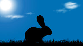 Vector silhouette of a rabbit. Vector silhouette of a rabbit on meadow at sunny day Stock Photo