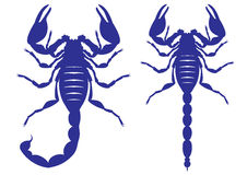 Vector silhouette of a scorpion Royalty Free Stock Image