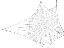 Vector silhouette of web of spider. Stock Photo