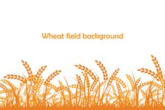 Vector silhouette of wheat. Wheat in the field Royalty Free Stock Photos