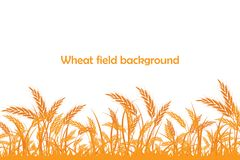 Vector silhouette of wheat. Wheat in the field Royalty Free Stock Photography