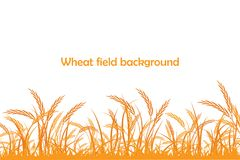Vector silhouette of wheat. Wheat in the field Royalty Free Stock Image