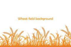Vector silhouette of wheat. Wheat in the field Stock Photography
