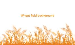 Vector silhouette of wheat. Wheat in the field on a white. Background Royalty Free Stock Photography