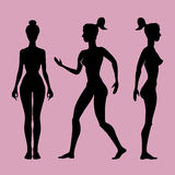 Vector silhouette  woman on a white background. Stock Photography