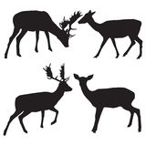 Vector silhouettes of animals Stock Photo