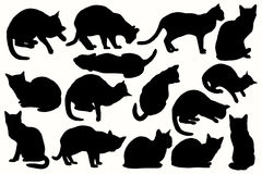 Vector silhouettes of cats in different positions. Royalty Free Stock Photography
