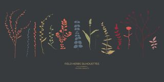 Set of field flowers, herbs. Vector silhouettes collection stock illustration