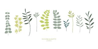 Set of field flowers, herbs. Vector silhouettes collection. stock illustration