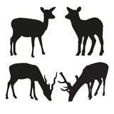 Vector silhouettes of deer Royalty Free Stock Images