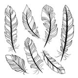 Vector silhouettes feathers Stock Photos