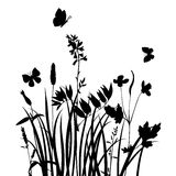 Vector silhouettes of flowers and grass with butterflies Stock Photo
