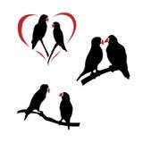 Vector silhouettes of a lovebird Royalty Free Stock Photos