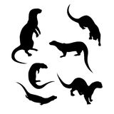 Vector silhouettes of a otter. Otter icons and silhouettes. Set of illustrations in different poses Royalty Free Stock Photo