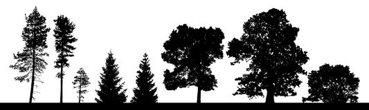 Vector silhouettes set of coniferous and deciduous trees ans bus. Hes stock illustration