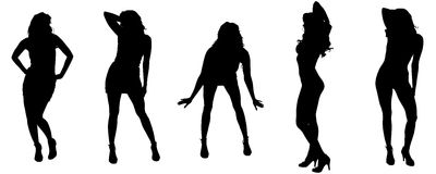 Vector silhouettes of sexy women. Stock Photos