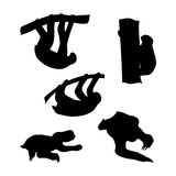 Vector silhouettes of a sloth Royalty Free Stock Images