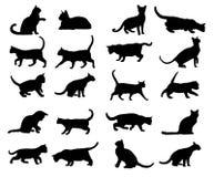 Vector - siluetas del gato Foto de archivo libre de regalías