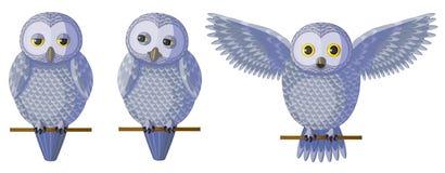 Vector silver grey owl set. stock image