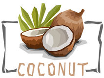 Vector simple illustration of coconut. Royalty Free Stock Image