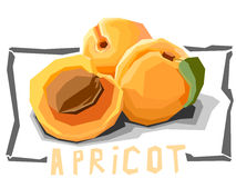 Vector simple illustration of fruit apricots. Royalty Free Stock Images